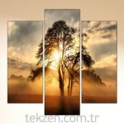 TabloSHOP - Alone Tree 3 Parçalı Canvas Tablo - PC-11